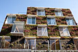 西壁面を14種類の草花で緑化しました